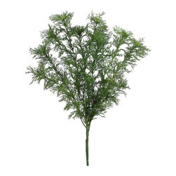 Silk Plants Direct - Silk Plants Direct Dill Bush (Pack of 12) - Pack of 12. Silk Plants Direct specializes in manufacturing, design and supply of the most life-like, premium quality artificial plants, trees, flowers, arrangements, topiaries and containers for home, office and commercial use. Our Dill Bush includes the following: