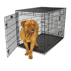 Frontgate - Ultimate Pro Triple Door Dog Crate - Professional gauge steel construction. Easy on and off removable doors. Attractive black powdercoated finish. Durable, easy to clean plastic pan. Surface protective rubber feet and plastic carry handles included. Secure your pet safely for travel, competitions, or training with the Ultimate Pro Dog Crate. Easy to assemble, fold down, or transport, the crate requires no tools. Locate the crate in nearly any position in your home or car and maintain access to the traditional front door, side door, or back door.. . . . . No tools necessary for assembly. Size adjusts with an easy-to-install folding divider panel. Bonus Guide to Crate Training DVD also included.