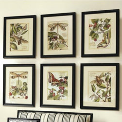 Whimsical Print - Set of 2 - These vibrantly colored entomology study was inspired by a hand-colored 19th century bookplate.