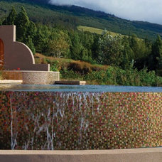 Modern Swimming Pools And Spas by Creative Tile, Fresno