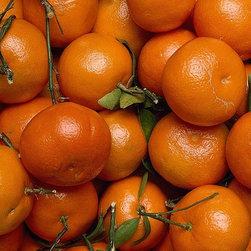 Magic Murals - Tangerines Wallpaper Wall Mural - Self-Adhesive - Multiple Sizes - Magic Murals - Tangerines Wall Mural