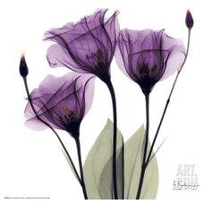 Artwork by Art.com