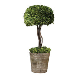 Uttermost - Uttermost Constance Lael-Linyard Decorative Box in Mossy Stone - Shown in picture: Preserved While Freshly Picked - Natural Evergreen Foliage Looks And Feels Like Living Boxwood. Single Topiary Is Potted In Mossy Stone Finished - Terra Cotta Planter. Preserved while freshly picked - natural evergreen foliage looks and feels like living boxwood. Single topiary is potted in mossy stone finished terracotta planter.