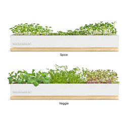 Micro-green Kit - When you don't have space for an herb garden but are just dying to pluck leaves off the sill and cook with them, this is a brilliant space-saving, fresh-eating idea.
