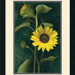 Amanti Art - Two Sunflower Stems Framed Print by Christina Florkowski - Add the luxury of rich tones and delicate floral forms to your decor. Sunflowers display a hearty strength and a sunny disposition that photographer Christina Florkowski handily captures here.