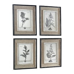Casual Grey Study Framed Prints - Set of 4 - An homage to the verdant seasons of spring and summer, the Casual Grey Study Framed Prints feature delicately drawn herbs along with their botanical names and French script. Light tan burlap mats surround each print; the inner lips and liners have a medium wood tone base with a heavily distressed white painted finish. The distressed black finish of the frames, accented with a soft gray and taupe wash, adds to the lovely aged aesthetic of the prints. Available as a set of four.
