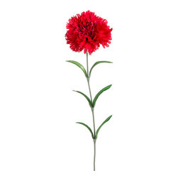 Silk Plants Direct - Silk Plants Direct Carnation (Pack of 12) - Red - Pack of 12. Silk Plants Direct specializes in manufacturing, design and supply of the most life-like, premium quality artificial plants, trees, flowers, arrangements, topiaries and containers for home, office and commercial use. Our Carnation includes the following:
