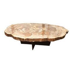 Petrified Wood Slice Coffee Tables Find Coffee And Cocktail Tables Online