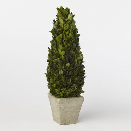 Traditional Artificial Plants And Trees by West Elm