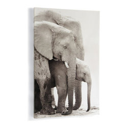 Grandin Road - Elephant Family Wall Art - Large and impressive photo of an elephant family. Printed on canvas and stretched over a frame. D-rings and hanging wire included. Make a dramatic style statement with our oversized Elephant Print. Whether you're a traveler, an animal lover, or a fan of black-and-white photography, there's a lot to love about this charming family portrait.  .  .  .