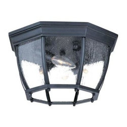 Acclaim Lighting - Flushmount Collection Ceiling-Mount 4-Light Outdoor Matte Black Light Fixture - Shop for Lighting & Fans at The Home Depot. This 4-light ceiling mount fixture is from our Flushmount collection and is made of durable cast aluminum. It will not rust and resists corrosion. This lantern features clear seeded glass panes.