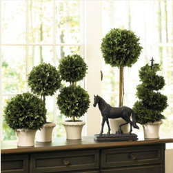 Boxwood Topiaries - The French love topiaries, indoors and out. These boxwood topiaries are a perfect French look to add to any room.