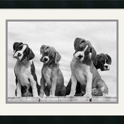 Amanti Art - Wonder Framed Print by Sharon Beals - \'Whoever said you can't buy happiness forgot little puppies.\' Gene Hill
