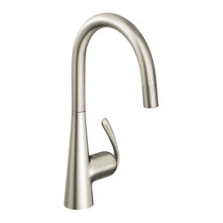 Grohe Pull Out Spray Kitchen Faucet - Grohe 32 226 DCE Ladylux3 Pro WaterCare Main Sink Dual Spray Pull-Down Kitchen Faucet in SuperSteel