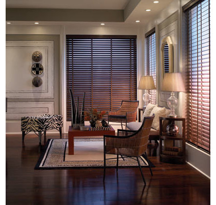 traditional window blinds by BlindSaver.com