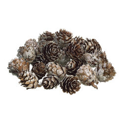 Silk Plants Direct - Silk Plants Direct Winter Mini Pine Cone (Pack of 24) - Pack of 24. Silk Plants Direct specializes in manufacturing, design and supply of the most life-like, premium quality artificial plants, trees, flowers, arrangements, topiaries and containers for home, office and commercial use. Our Winter Mini Pine Cone includes the following:
