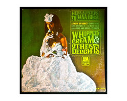 """Glittered Herb Alpert and the Tijuana Brass Whipped Cream Album - Glittered record album. Album is framed in a black 12x12"""" square frame with front and back cover and clips holding the record in place on the back. Album covers are original vintage covers."""