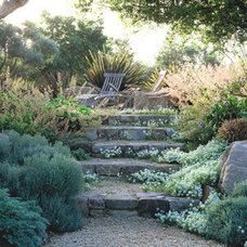 Traditional Landscape by Suzman Design Associates
