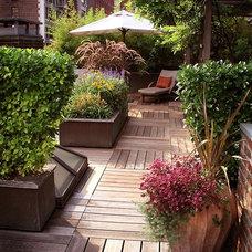 by SP Gardens - Susanna Pagan Landscape Design