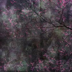 Cherry Tree Branches - © Ryn Clarke