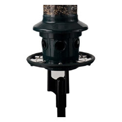 "Brome Bird Care - Brome Squirrel Buster Plus Pole Adaptor, 1025 - Mount your Squirrel Buster Plus wild bird feeder anywhere in your yard using the new pole adaptor. The powder coated die cast pole adaptor fits any 1"" pole and comes with a stainless steel mid ring to thwart squirrels. It is 100% squirrel proof and rust proof, comes with a hassle free lifetime warranty. (Feeder Not Included)"