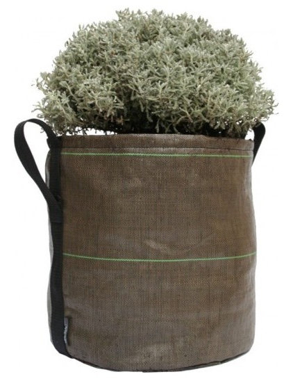 Contemporary Outdoor Pots And Planters by SPROUT HOME