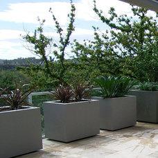 Contemporary Outdoor Planters by H2O Designs