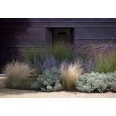 plantings on Pinterest