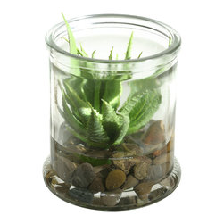 "D&W Silks - Artificial Mini Aloe Succulent in Candle Jar - It's amazing how much adding a plant can change the look of a room or decor, but it can be difficult if your space is not conducive to growing plants, or if you weren't exactly born with a ""green thumb."" Invite the beauty of nature into your home without all the upkeep with this maintenance-free, allergy-free arrangement of an artificial mini aloe succulent in a candle jar. This is not a living plant."