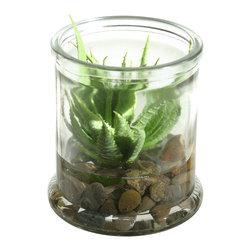 D&W Silks - D&W Silks Mini Aloe Succulent In Candle Jar - Mini Aloe Succulent