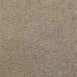 "XSCORP - Xscorpion 40""X15Ft Automotive Carpet Prairie Tan Color - Xscorpion 40""X15Ft Automotive Carpet Prairie Tan Color"