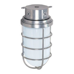 """Nuvo Lighting - Nuvo Lighting 76/626 Single Light 10"""" 200W Industrial Style Surface Mount Fixtur - Nuvo Lighting 76/626 Single Light 10"""" 200W Industrial Style Surface Mount Fixture with Frosted Glass Shade, in Metallic Silver FinishNuvo Lighting 76/626 Features:"""
