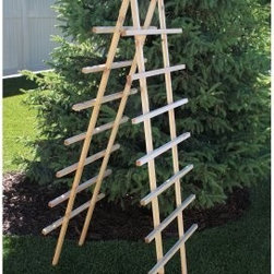 Gronomics Ladder Trellis Kit - 24W x 72H in. - The Gronomics Ladder Trellis Kit - 24W x 72H in. has a simple ladder design that makes it ideal for vegetables that need space to grow up. Tomatoes peas beans squash and more will love climbing this sturdy trellis. It's handcrafted in the USA from western red cedar and may be placed directly into the soil or secured to any raised or elevated garden bed. This ladder trellis includes a five-year warranty. About GronomicsWith Gronomics you no longer need a big yard to do your gardening. The Minnesota-based company manufactures unique ergonomically designed 100% Western Red Cedar garden planters that offer tool-free assembly. Gronomics makes everything from elevated beds raised beds planter benches and much more all of which are designed to make gardening easy and more accessible for all ages. Herbs vegetables and flowers can all be tended to while standing or sitting and the company's unique designs even allows easy access for those in wheelchairs.