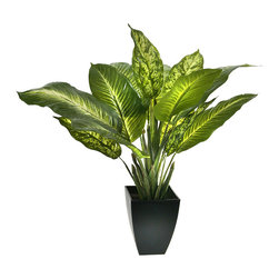 Regency International - Golden Dieffenbachia Pot - Elevate the interior with the vibrant greenery of this wilt-free plant.   24'' H Polyester / plastic / iron Imported