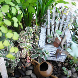 Miniature/Fairy Garden Kit by Tina's Itty-Bitty Garden - Fairy gardens are a new trend that's a fun twist on terrarium creations. Set up a small home for fairies at your dinner party for an extra magical touch.