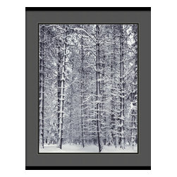 Amanti Art - 'Pine Forest in the Snow, Yosemite National Park' Framed Print by Ansel Adams - No one captured the splendor of nature quite like the late, great Ansel Adams.  Here, a forest of snow-laden boughs makes a breathtaking black and white statement in your decor.