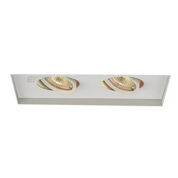 W.A.C. Lighting - W.A.C. Lighting MT-216TL-WT Double Light Metal Halide Multi Spot Invisible Trim - Rectangle two light gimbal ring style adjustable recessed fixture, available with trim or Invisible Trim™, designed to sit flush with the ceiling for a clean, architectural look. Housing and trim ordered separately.