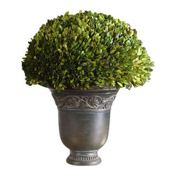 Uttermost Globe Preserved Boxwood - Preserved while freshly picked, natural evergreen foliage looks and feels like living boxwood, potted in a carved relief, ancient bronze patina planter. Preserved while freshly picked, natural evergreen foliage looks and feels like living boxwood potted in a carved relief, ancient bronze patina planter.