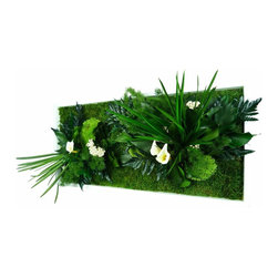 flowerboxnature - Rectangle Nature Frame - This Rectangular Nature Frame will give you a different option to meet the art on your walls. The various plants used in the Nature Frames are 100% natural and biodegradable. Use various shapes and sizes to create a modern salon wall or hang a single piece to add a wall garden to any space for many years to enjoy.