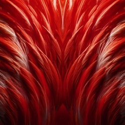 Walls Republic - Cardinal Feathers Mural Wallpaper M8930 - 4 Panels - Cardinal Feathers is a fanned feather pattern digital wallpaper mural. In a rich shade of red it will electrify your walls and be a great feature wall in a living room. Due to this item being a custom order, it takes longer to ship than our regular products.