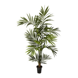 Nearly Natural - Nearly Natural 6' Kenitia Palm Silk Tree - Standing at an impressive 6 feet tall, this attractive Kentia Palm Tree will definitely draw the eye of anyone who sees it. With its lush green leaves providing rich foliage, and housed in a sturdy plastic pot, this will definitely be a popular favorite in any type of environment. Perfect for anywhere a little island charm is needed.
