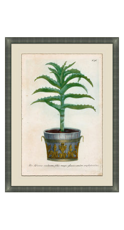 Soicher-Marin - Small Planters D - Giclee Print with a silver contemporary wood frame.  Print mounted on posterboard then floated on an off white mat.  Includes glass, eyes and wire. Made in the USA. Wipe down with damp cloth