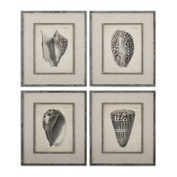 Vintage Diderot Shells Art Set of 4 - *Prints Are Accented By Oatmeal Linen Mats Then Surrounded By Dark Charcoal Frames With Heavy Gray Distressing And A Taupe Glaze. Prints Are Under Glass.