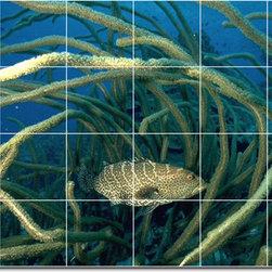 Picture-Tiles, LLC - Sea Life Photo Wall Tile Mural 21 - * MURAL SIZE: 24x36 inch tile mural using (24) 6x6 ceramic tiles-satin finish.