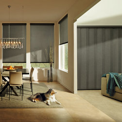 Designer Roller Screen Shades - Weldon Springs - Hunter Douglas® Designer Screen Shades give this room a modern look with the sleek black fabric.