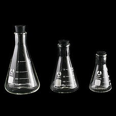Eclectic Vases Erlenmeyer Flask