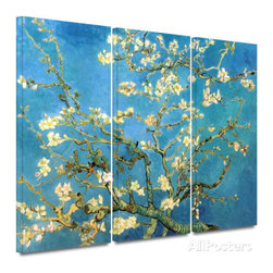 Almond Blossom 3 piece gallery-wrapped canvas -