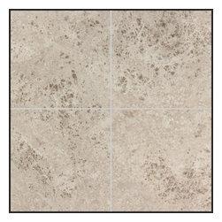 Stone & Co - Tundra Gray Polished 6x6 Marble Tile - Finish: Polished