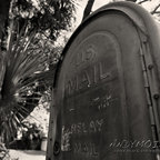 Old US Mailbox - St Petersburg - Florida - Andy Moine