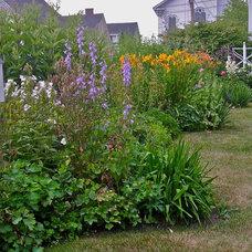 Cottage Gardens (New England)